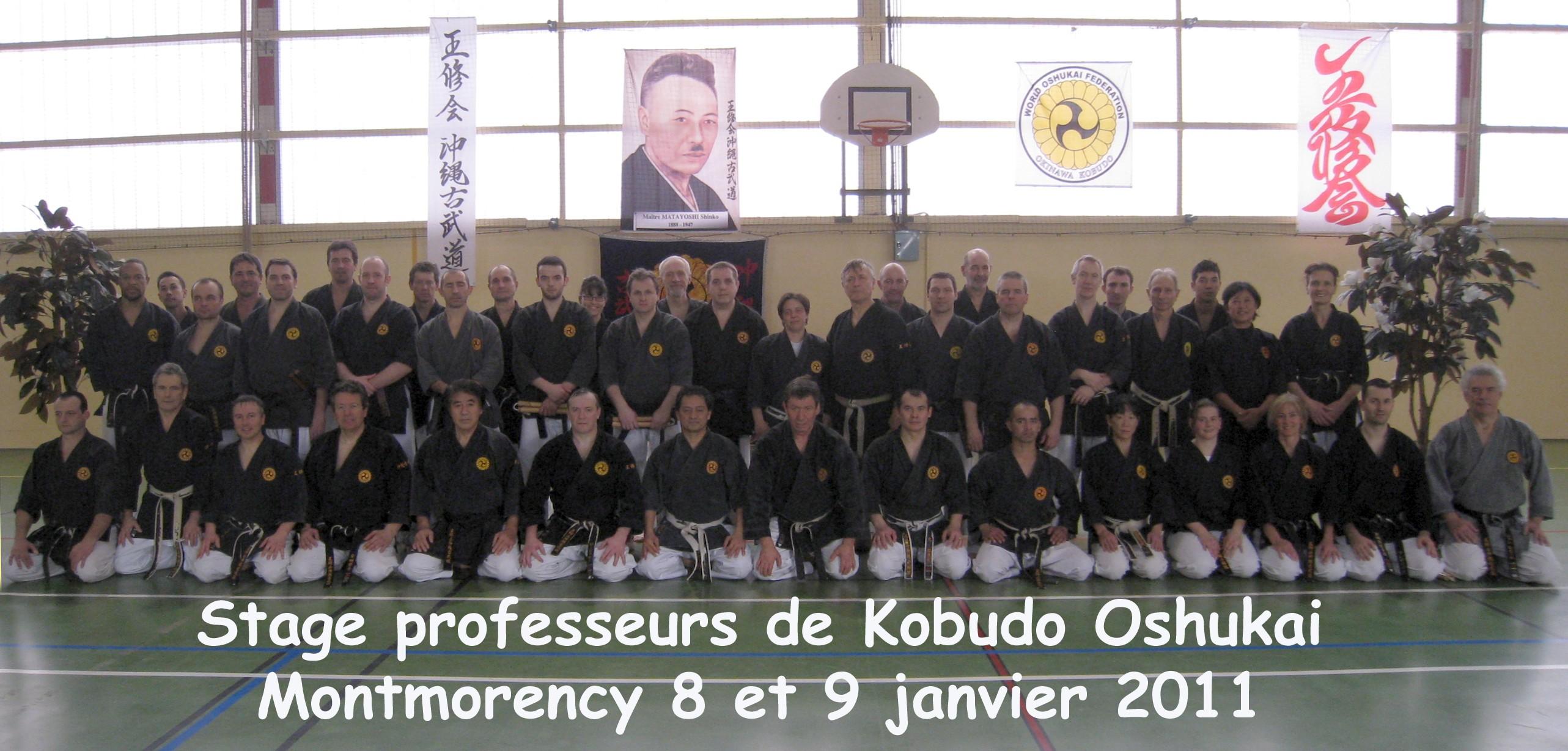 20110109stagekobudoprofmontmorency.jpg