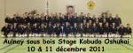 2011-12-10_kobudo_aulnay-p