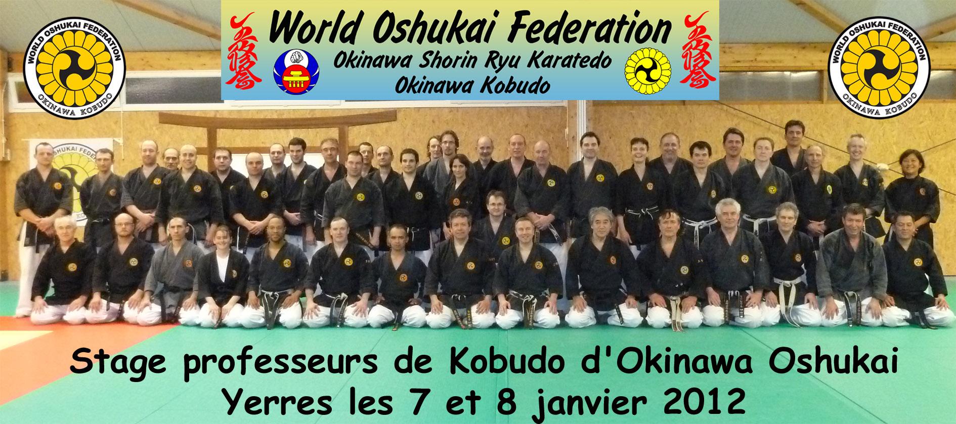 Stage Professeurs Kobudo YERRES Janv 12 2012_01_08-prof-kobudo-yerres-p
